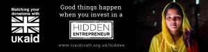 Hidden Entrepreneur